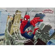 Komar Spider-Man Concrete Fotobehang 368x254cm