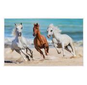 Infraroodverwarmingspaneel 600W Paarden in Galop 60x100cm