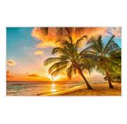 Infraroodverwarmingspaneel 600W Barbados Palmenstrand 60x100cm