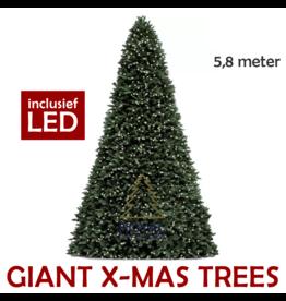 Royal Christmas Grote Kunstkerstboom Giant Tree 580 cm | inclusief LED