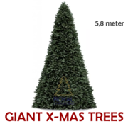 Royal Christmas Large Artificial Christmas Tree Giant Tree | Height 5.8 Meter