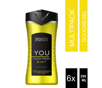 6-Pack Axe Bodywash 6 in 1 Fresh 250 ml