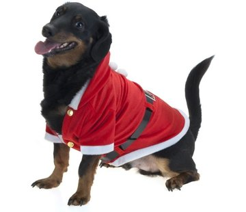 Kerst Jasje voor Honden - Verkleedattribuut
