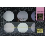 Qentissi Highlight Palette Cool Colors 28 g