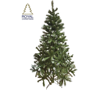 Royal Christmas Artificial Christmas Tree Dakota - light snow - 210 cm