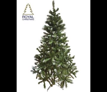 Royal Christmas Künstlicher Weihnachtsbaum Dakota - Licht Schnee - 210 cm
