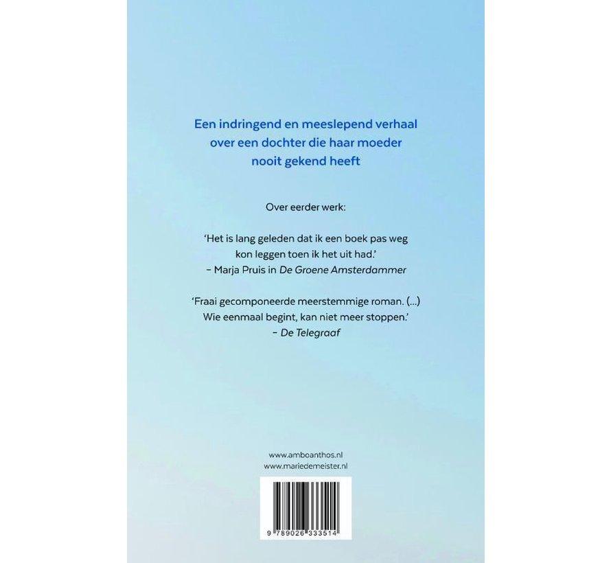 De stilte van Thé van Marie de Meister | Paperback van 352 pagina's