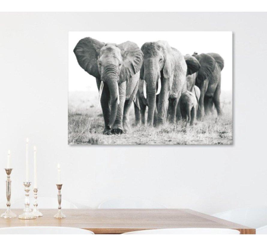 ter Halle® Glasschilderij 110 x 160 cm | Elephants black white