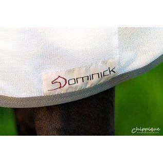 Dominick Flysheet