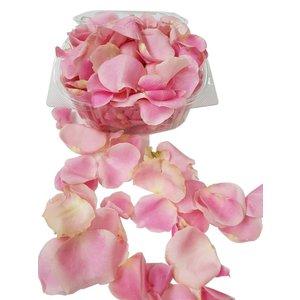 Rozen.nl Rosenblätter rosa