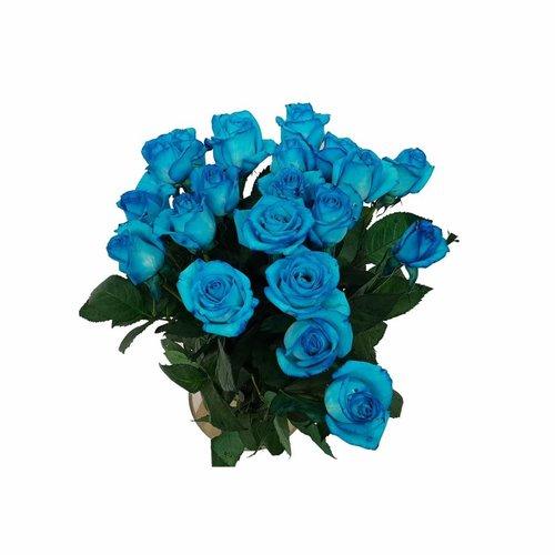 Rozen.nl Hell blaue rosen