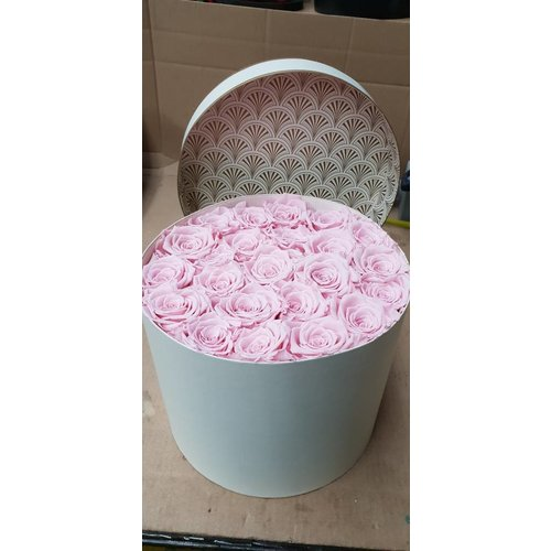 Rosen Box