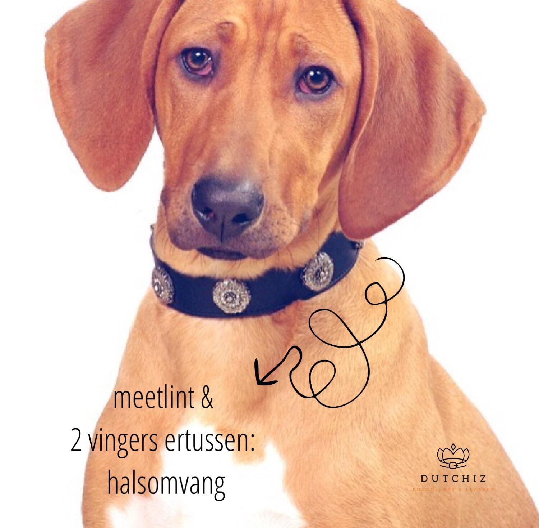 Dutchiz hondenhalsband halsomvang meten