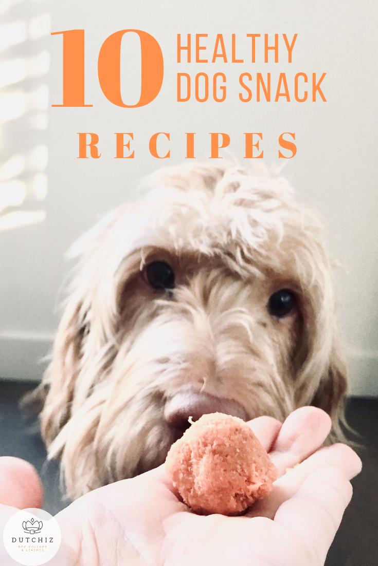10 healthy dog snack recipes