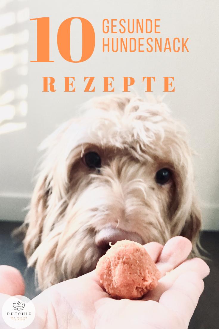 gesunde hunde snack rezepte