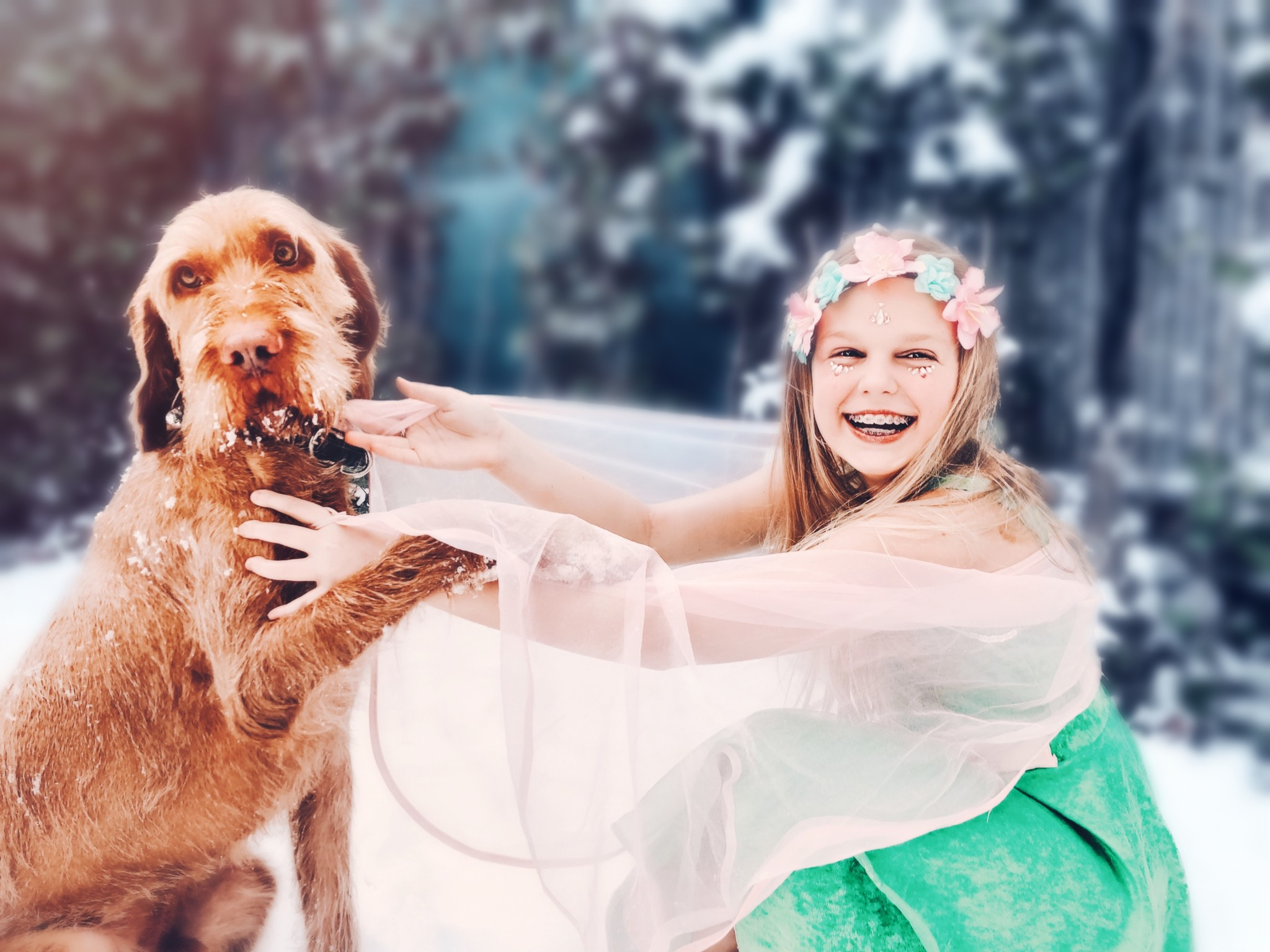 Kids and dogs fairytale wonderland
