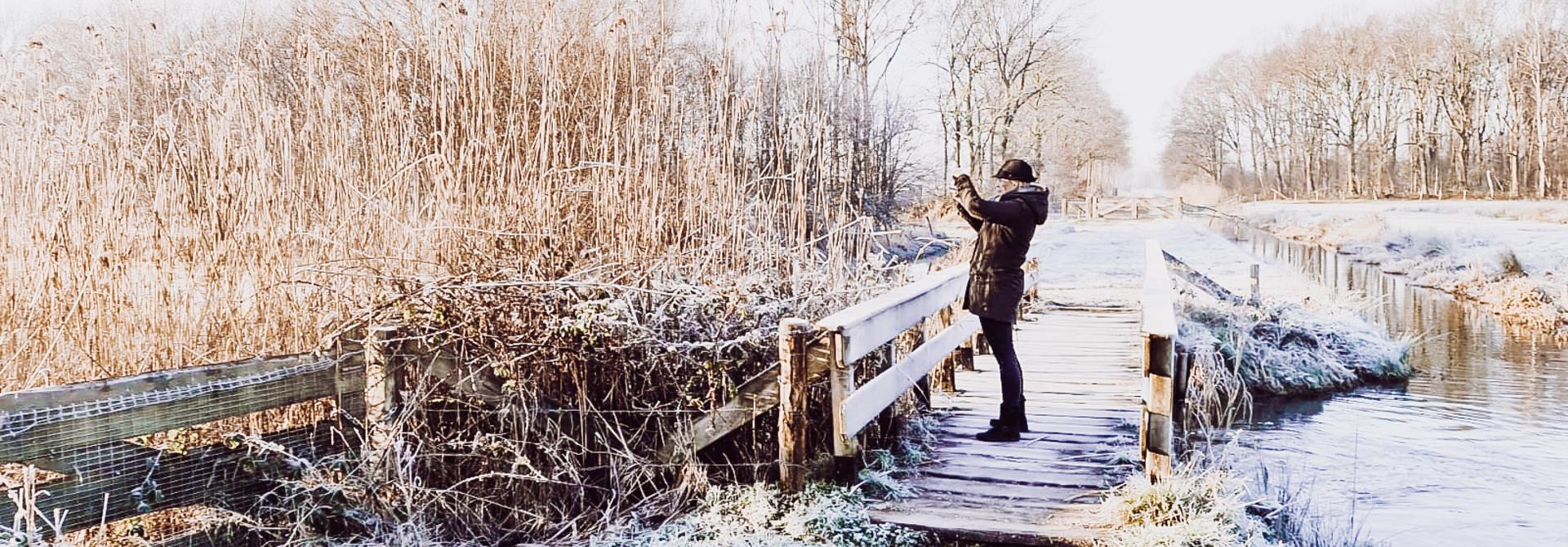 Ein schöner Morgen mit den Hunden im holländischen Winterwunderland