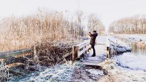 A beautiful morning walking the dogs in Dutch winter wonderland