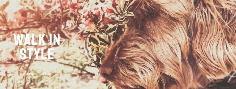 Muttertaggeschenk, das beste Geschenk für eine ' Hunde Mutter'
