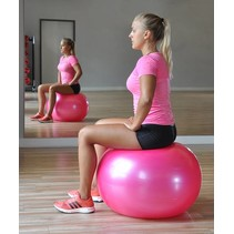 Haushalt  66046 - Gymnastiekbal - 0.65 cm doorsnede