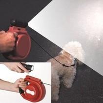 Hondenriem met verlichting
