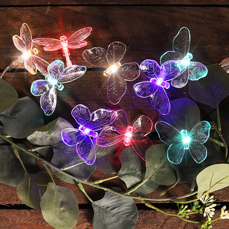 Haushalt 70332 - Lichtsnoer - vlinders - 24 multi LED
