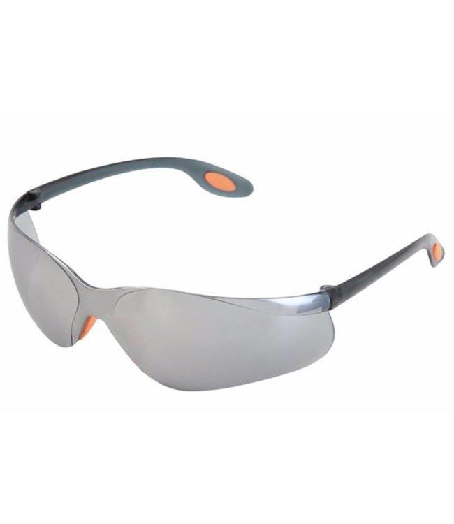 Industrie Veiligheidsbril Grijs