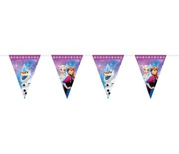 Disney Frozen Vlaggenlijn - 230cm