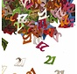 Confetti 21 Jaar Multicolor