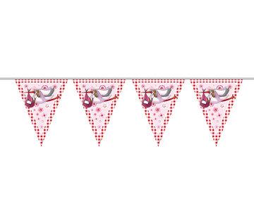 Vlaggenlijn Geboorte Meisje - 10 meter