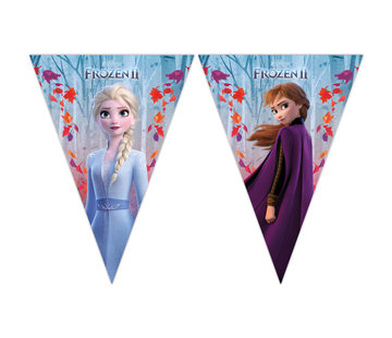 Vlaggenlijn Frozen 2 - 2 meter