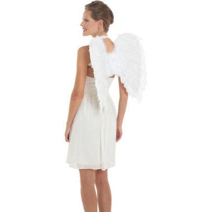 Vleugels kopen?