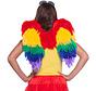 Engelen Vleugels Regenboog 50x50cm