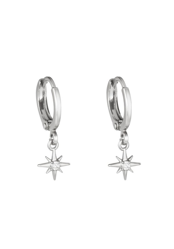 Earrings Lustrous Silver