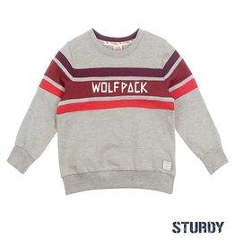 Sturdy Sweater Wolf Pack - Good Fellows Grijs
