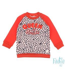 Feetje Sweater - Funbird Roze