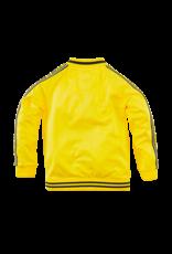 Z8 Stephan Lazy lemon
