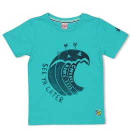 Sturdy T-shirt Wild One - Smile & Wave Mint
