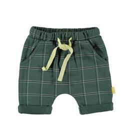 BESS Shorts Check Green