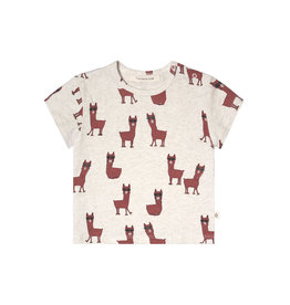 Your Wishes Laidback Lama | Loose Tee Terra