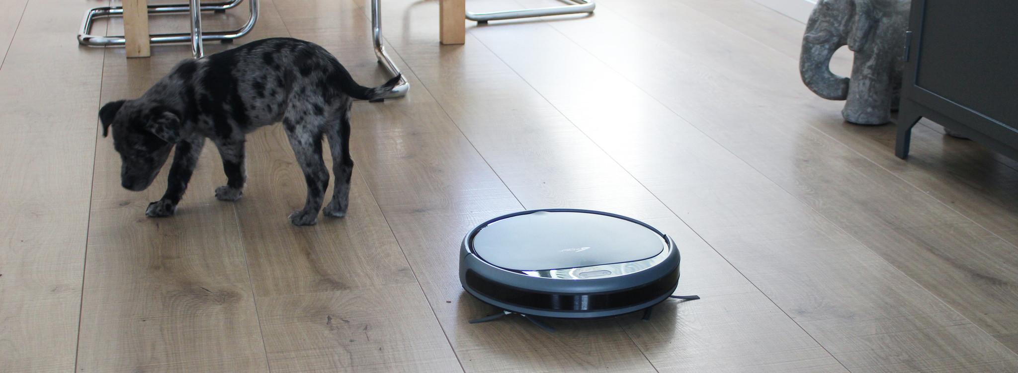 robotstofzuiger-bep-dierenharen