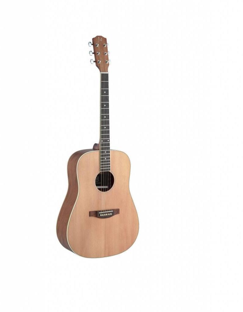 James Neligan James Neligan akoestische gitaar ASY−D