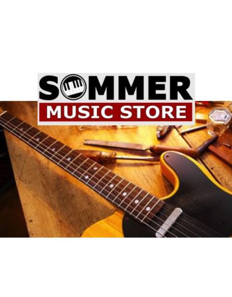 Servicebeurt Electrische gitaar