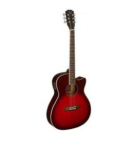 James Neligan James Neligan akoestische gitaar BES-ACE-TRB