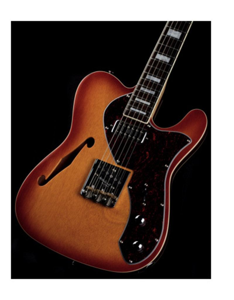 Revelation Revelation electrische gitaar TSS Honey Burst