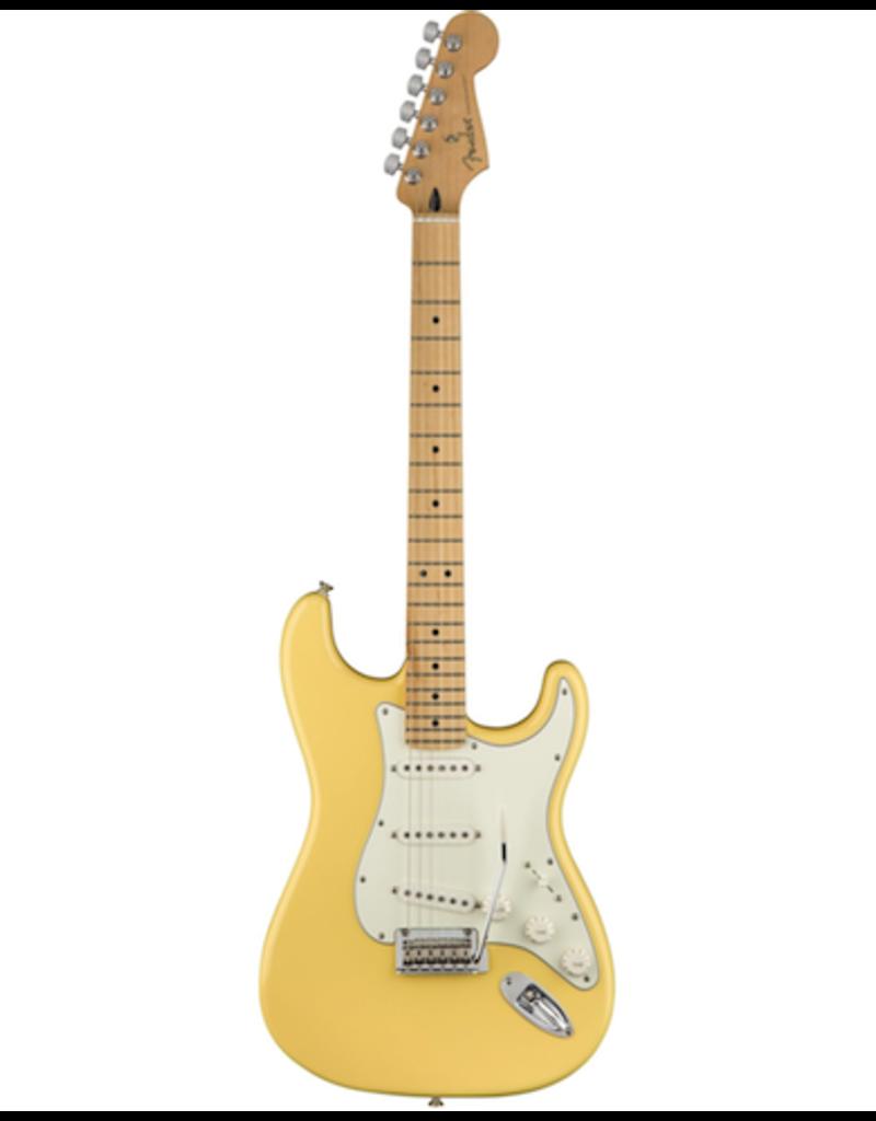 Fender Fender Stratocaster buttercream maple neck