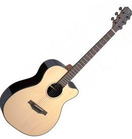 James Neligan James Neligan LYN-ACFI akoestische gitaar met fishman element