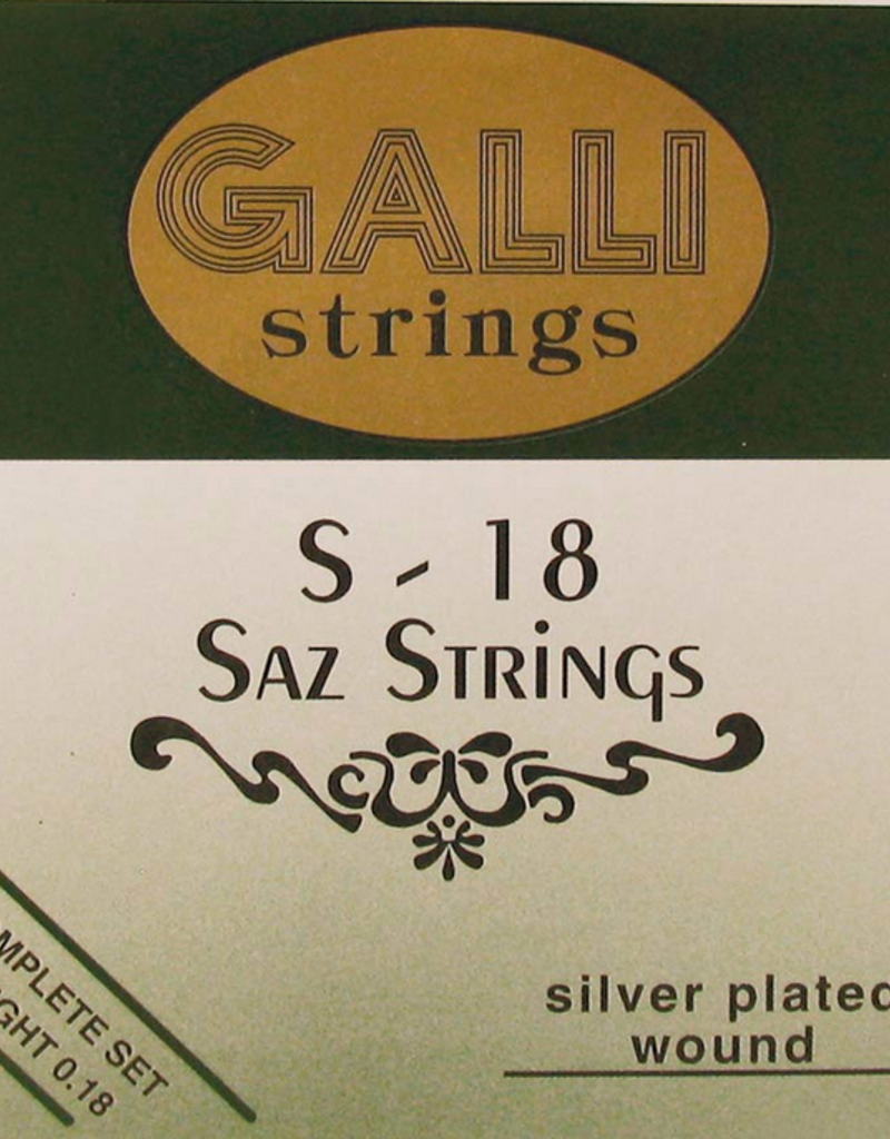 Galli Galli Saz snaren set S-18