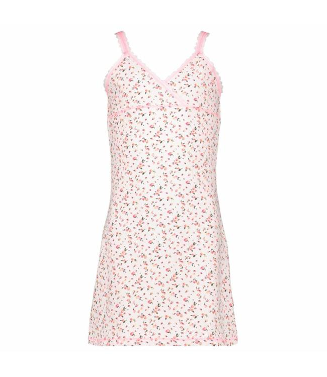 Claesen's Dress Rose Buds