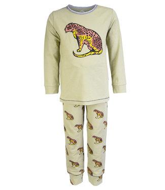 Claesen's Pyjama Cheetah